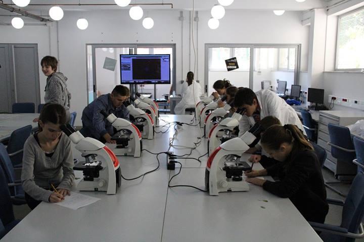 petnica-mikroskopi