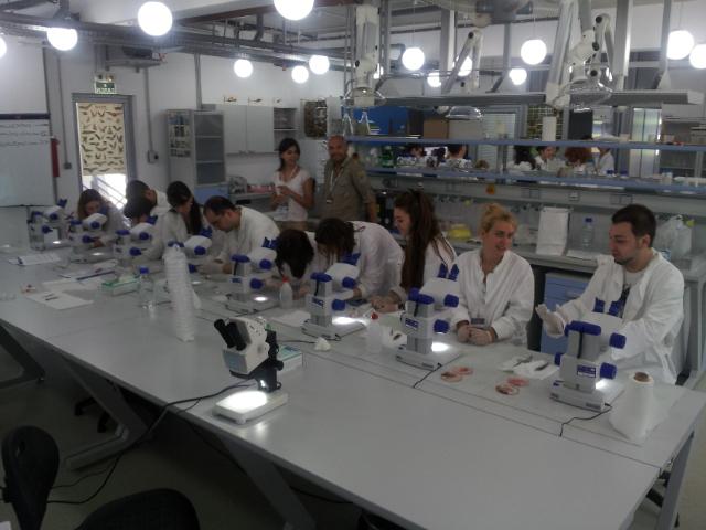 petnica-laboratorija