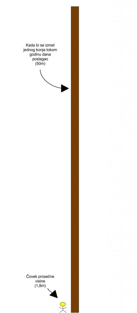 Covek-konj-izmet