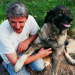 Milan Blagojević, Folkk