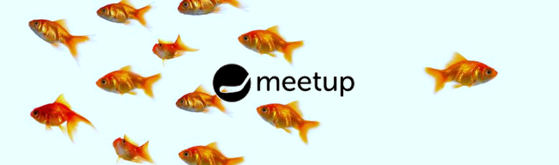 Startit Meetup