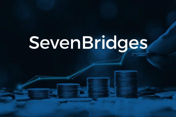 seven bridges investicije