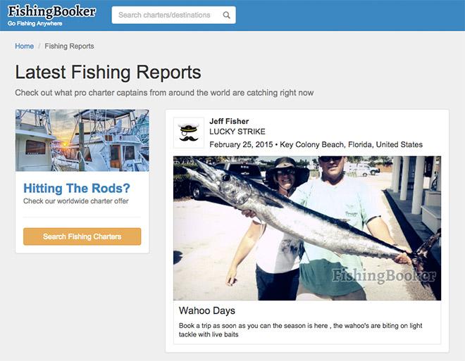 fishing-feed